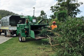Residential Tree Services  Tweed Shire & Gold Coast